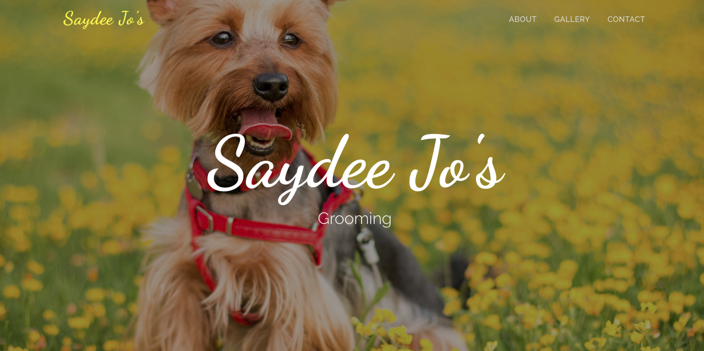 Picture of Dog Grooming Web design that I did